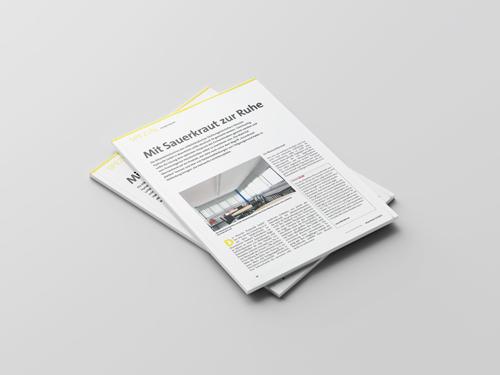 Objektbericht Deckensegel in einer Mitarbeiterkantine bei der Hänssler Hydraulik GmbH in Malerblatt 12/15